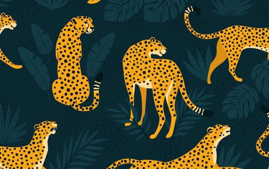 Bild von dem Produkt Leoparden-Bande Vorderseite