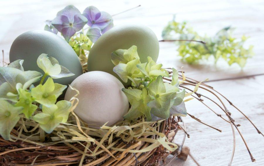 Bild von dem Produkt Ostereier Vorderseite