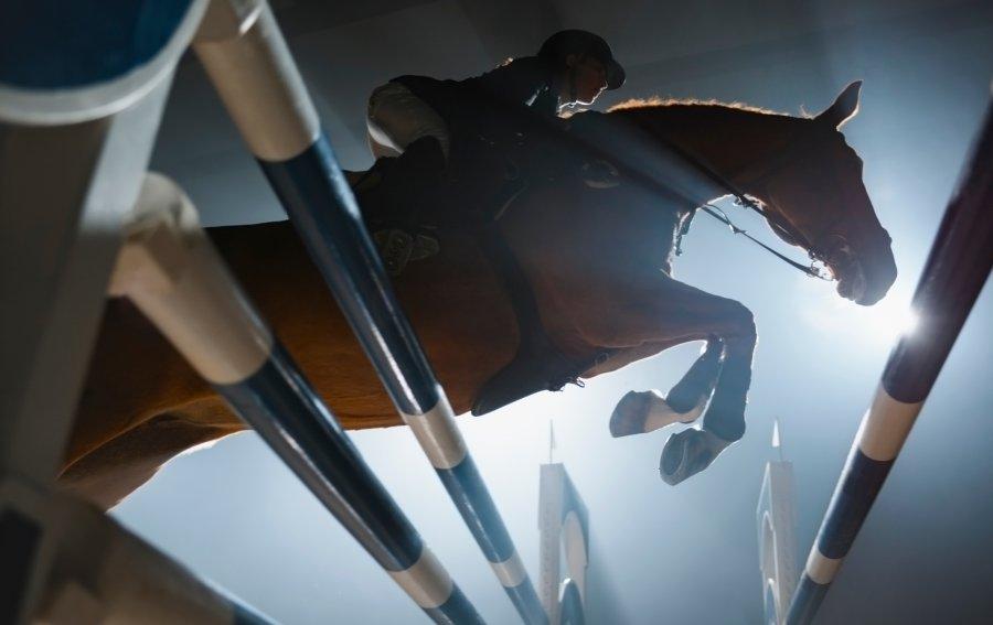 Bild von dem Produkt Pferdesport Vorderseite
