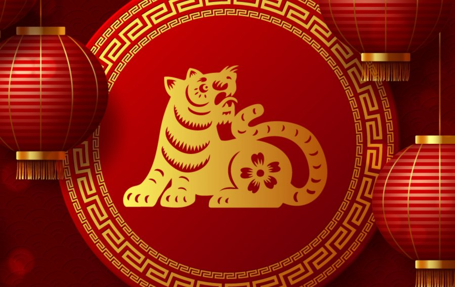 Bild von dem Produkt Tiger Vorderseite