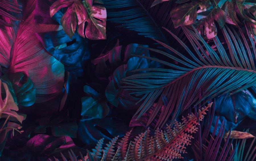 Bild von dem Produkt Tropische Blätter Vorderseite
