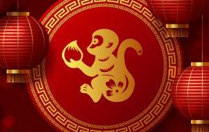 Bild von dem Produkt Affe
