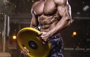 Bild von dem Produkt Bodybuilder mit Gewichten