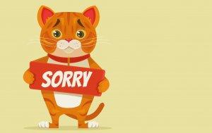 """Bild von dem Produkt Comic-Kätzchen mit """"Sorry"""""""