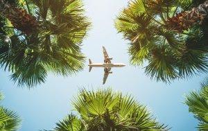 Bild von dem Produkt Fernflug