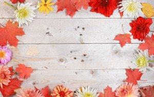 Bild von dem Produkt Herbstgrüße