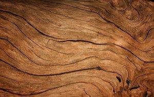 Bild von dem Produkt Holz