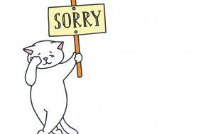 """Bild von dem Produkt Katze mit """"Sorry"""""""