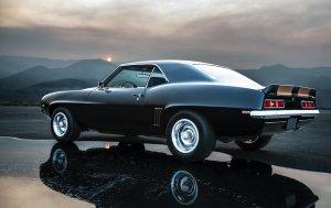 Bild von dem Produkt Muscle Car