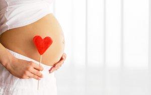 Bild von dem Produkt Schwangerschaft