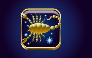 Bild von dem Produkt Skorpion