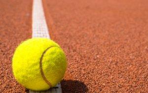 Bild von dem Produkt Tennisball