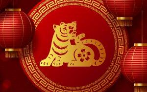 Bild von dem Produkt Tiger